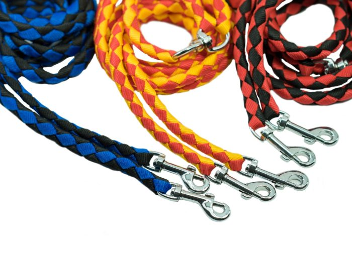 Pet Leash For Control A Dog On Isolated White Background. Pet A