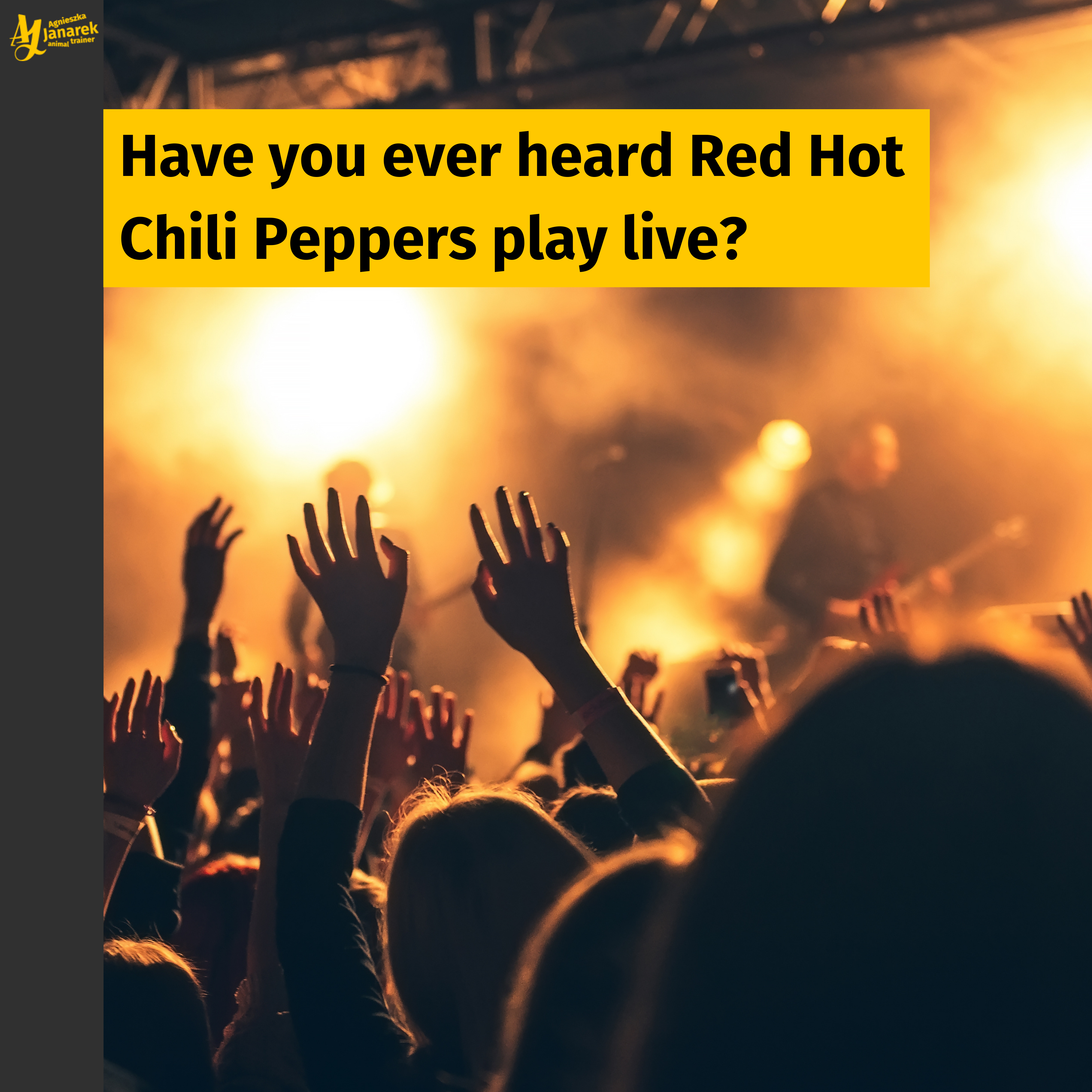 Have You Ever Heard Red Hot Chili Peppers Play Live?